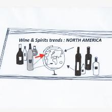 The Vinexpo Study on North America: the US boosts global consumption, while Canada imports massively
